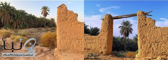 بوابة إحدى المزارع #لالدلم  تصوير المبدع الأستاذ حسين الهسكر