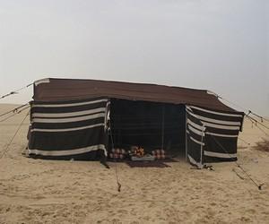 مواطن يقتحم خيمة ويدهس مواطن لخلاف ويصيب اخر