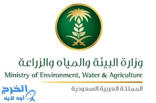 البيئة تكشف ضوابط السماح بتصدير المواشي الحية المحلية