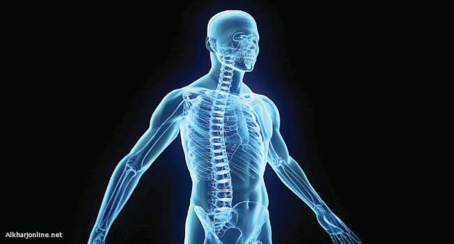 اكتشاف #عضو_جديد في جسم الإنسان