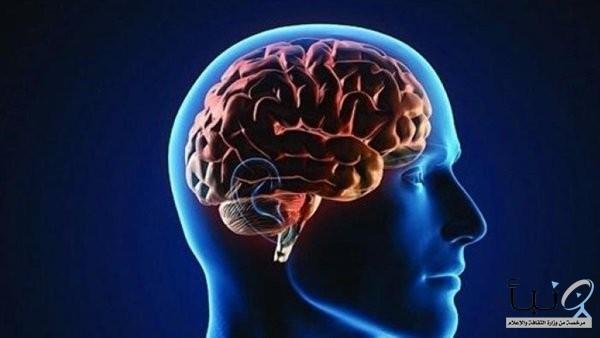 دراسة: السمنة تؤدي لصغر حجم دماغ الإنسان