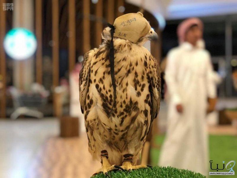 """#اختتام فعاليات """"معرض اليوم العالمي للطيور المهاجرة"""" بالرياض"""