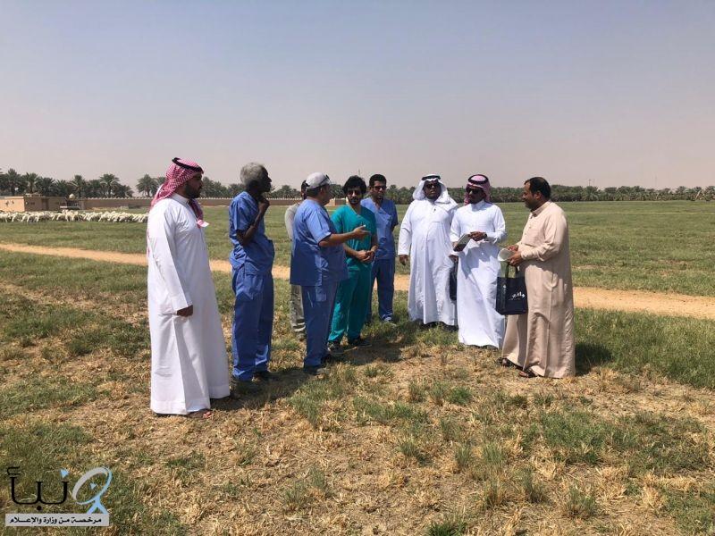 فريق من مكتب وزارة البيئة والمياه والزراعة بالخرج وشركة أراسكو للقيام بجولات ميدانية للإرشاد البيطري