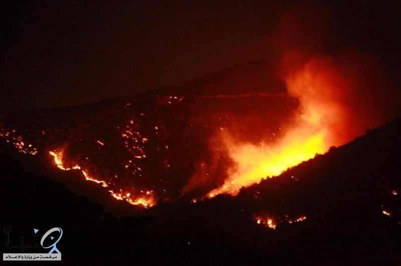 سلسلة من الحرائق تجتاح عدة مناطق في لبنان وتداهم السكان