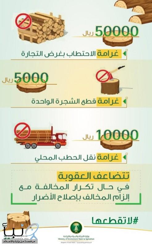 وزارة البيئة قطع الأشجار. غرامتها بخمسين الف ريال