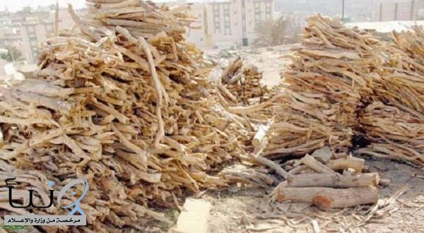 اللجنةالأمنية  تضبط  11 مُدمراً للبيئة.. بحوزتهم 7 أطنان من الحطب المحلي