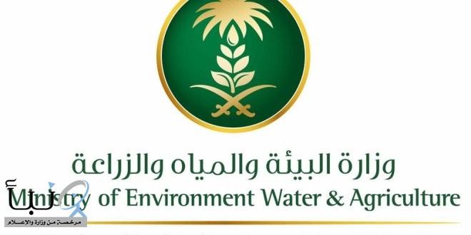 """""""البيئة"""" تصدر 35 صكًّا زراعيًّا جديدًا وتوزع 15 ألف شتلة في #رفحاء"""