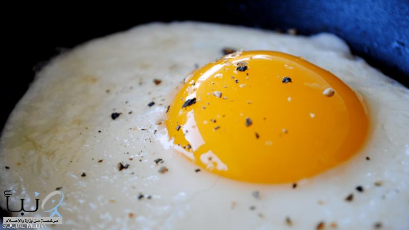 كم بيضة في اليوم؟ دراسة طبية تقدم الجواب