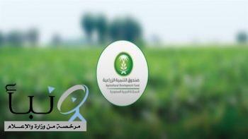"""""""الصندوق الزراعي"""" يبدأ اليوم استقبال طلبات القروض في مناطق الدرع العربي"""