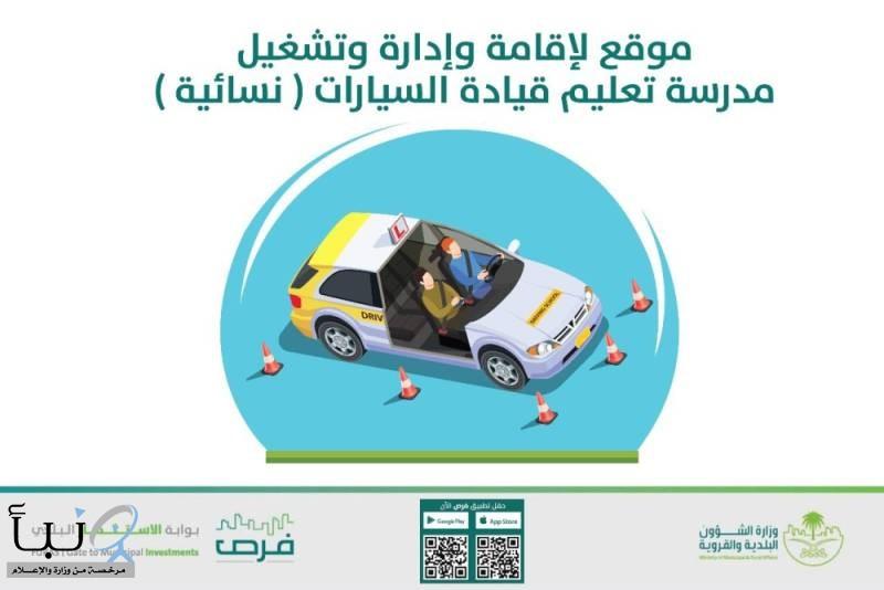 أمانة المدينة تطرح فرصة استثمارية لمدرسة تعليم قيادة سيارات للنساء