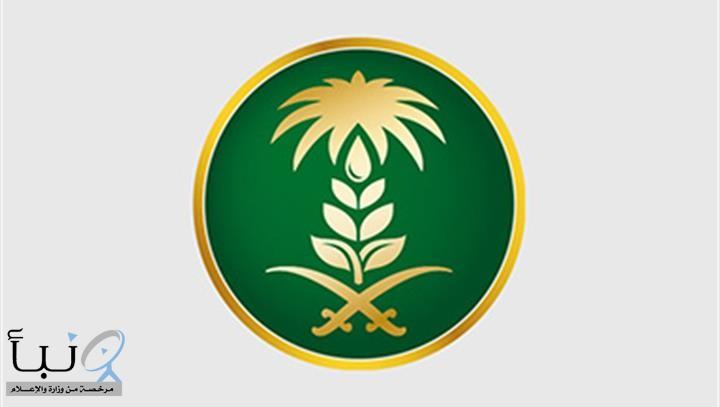 """""""#بيئة_رفحاء"""" تنفذ جولات ميدانية على المراعي شرق المحافظة لمنع الرعي الجائر وحمايتها من التصحّر"""