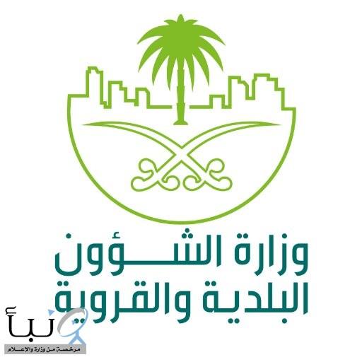 وزير الشؤون البلدية والقروية المكلف يوجه بتهيئة الحدائق والساحات البلدية والمتنزهات