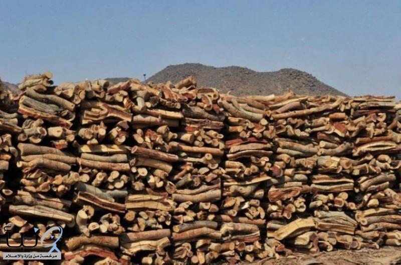 «البيئة»: منع بيع الحطب والفحم وتخزينه أو ترويجه إلا بتصريح #عاجل