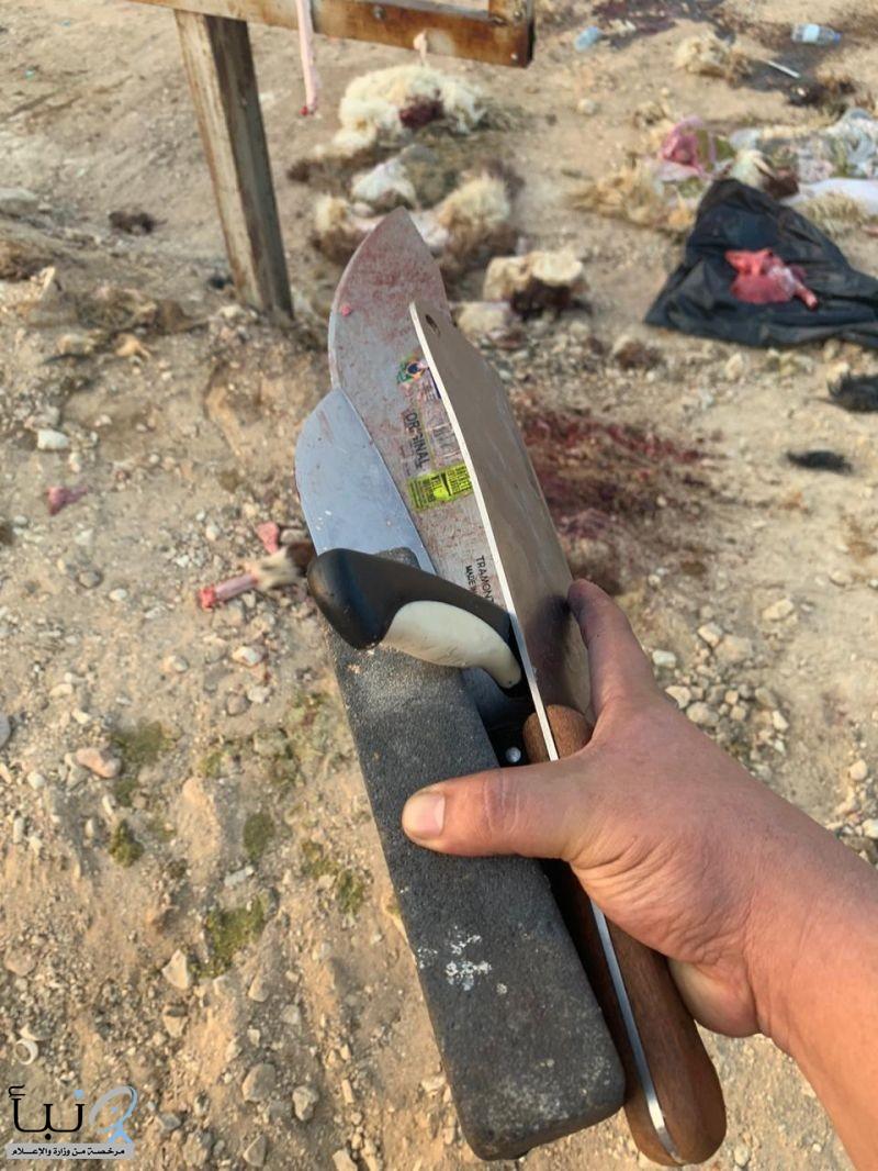 بلدية  محافظة الخرج  تضبط عمالة مخالفة تقوم بذبح الذبائح بطرق مخالفة