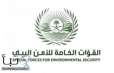 القوات الخاصة للأمن البيئي تضبط ، عدداً من المخالفين لأنظمة الصيد