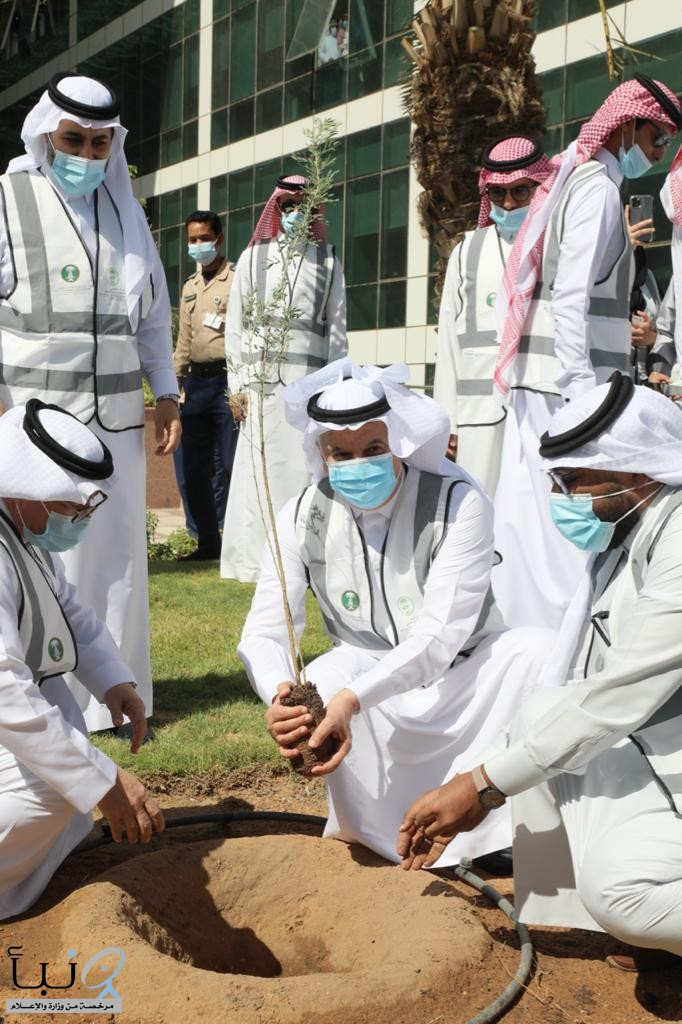 """""""البيئة"""" تطلق حملة """"لنجعلها خضراء"""" في 165 موقعا لزراعة 10 ملايين شجرة"""