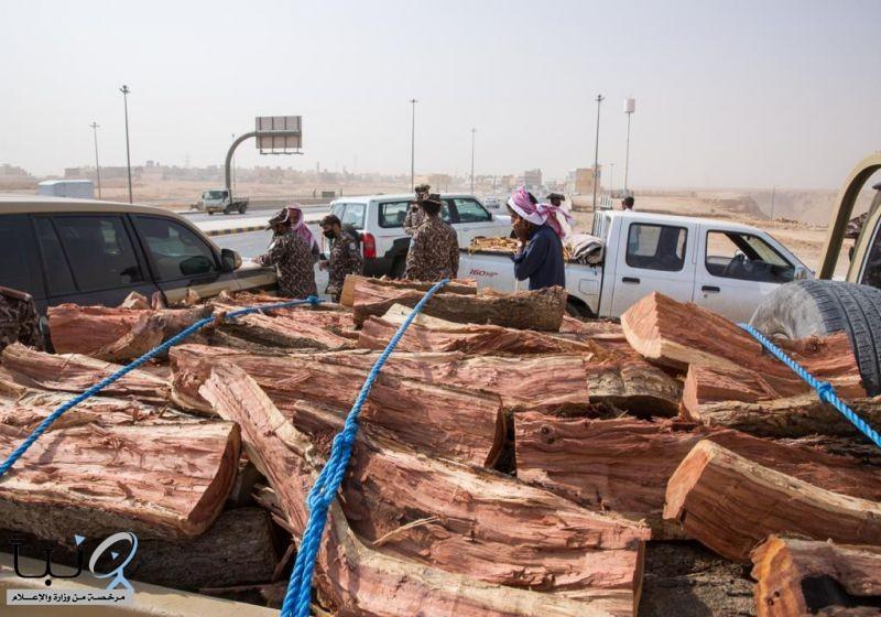 لقوات الخاصة للأمن البيئي تضبط 16 طناً من الحطب المحلي المعد للبيع في مدينة الرياض