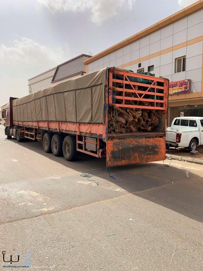 #ضبط 10 طن من الحطب المحلي في الجموم