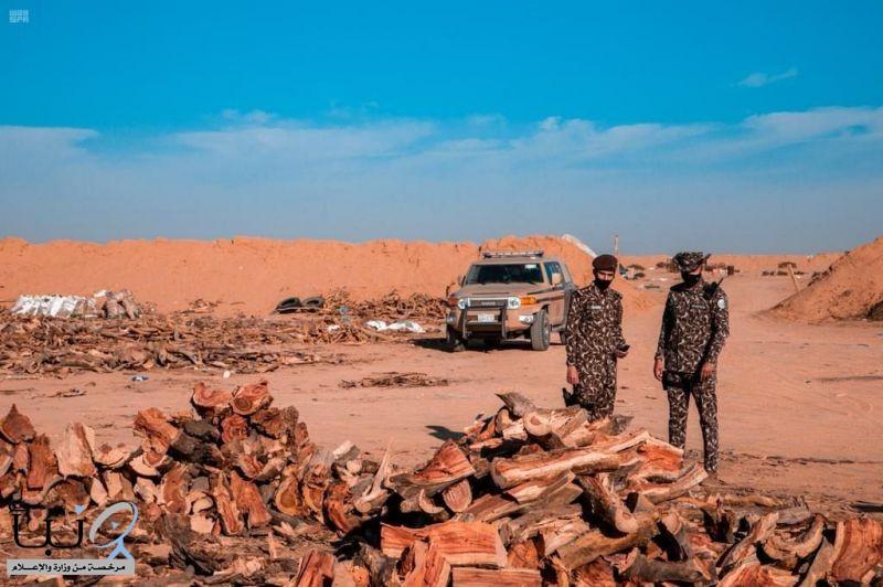 ضبط أكثر من (113) طناً من الحطب المحلي بحوزة (74) مخالفاً في مناطق المملكة