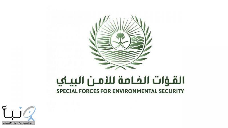 القوات الخاصة للأمن البيئي والمركز الوطني لتنمية الحياة الفطرية يحذران من مخالفة نظام البيئة ولوائحه التنفيذية