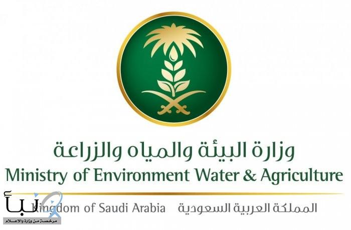 """""""#البيئة"""" تستعيد 200 ألف متر² من التعديات على أراضي المراعي والغابات في #عسير"""