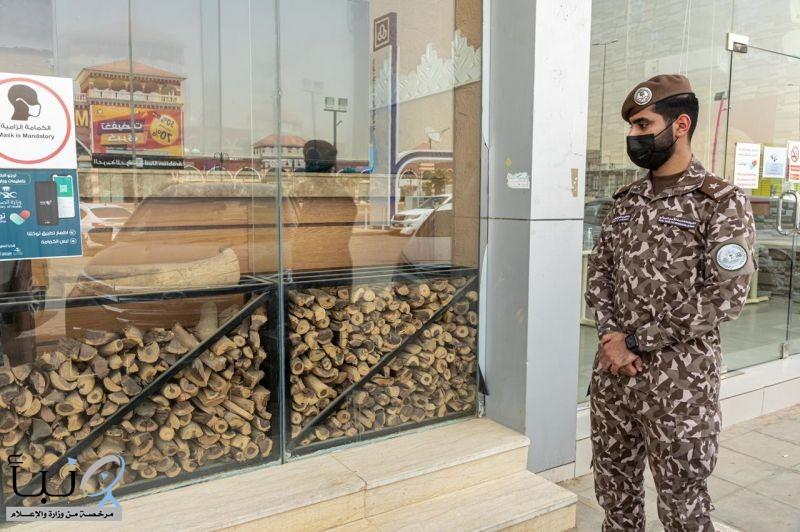 القوات الخاصة للأمن البيئي تضبط مخالفين لنظام البيئة لبيعهم واستخدامهم حطباً محلياً في أنشطة تجارية