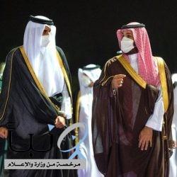 بالصور.. ولي العهد الأمير محمد بن سلمان يستقبل أمير دولة قطر #عاجل