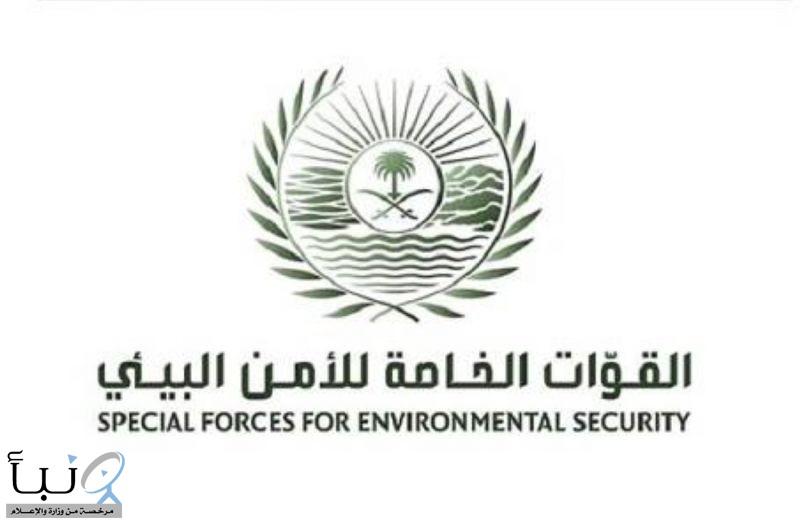 القوات الخاصة للأمن البيئي توقف (17) مخالفًا لنظام البيئة لارتكابهم مخالفات رعي