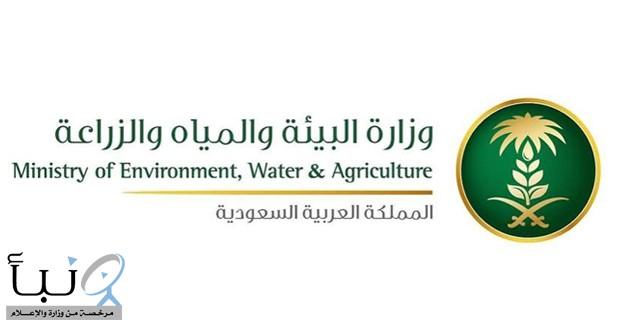 """""""البيئة"""" تطلق برنامج التدريب المستمر لرفع مستوى الكوادر الوطنية في مجال المياه"""