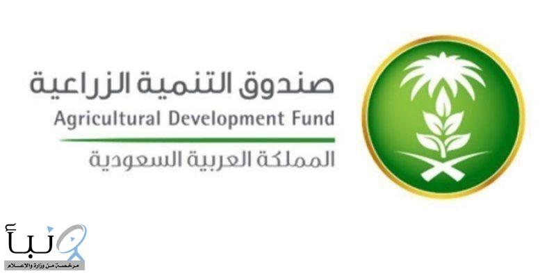 صندوق التنمية الزراعية يقيم ورشة عمل افتراضية عن دعم التوطين في قطاع الدواجن