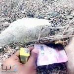 ضبط مواطن أحرق عملة نقدية مزيّفة