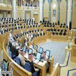الشورى يطالب بخطة لإنشاء مدن للألعاب الترفيهية بجميع المناطق