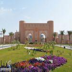 #وظائف أكاديمية في #جامعة_الملك_فيصل