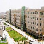 وظائف أكاديمية ب«جامعة الملك خالد»