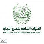 الجهات الأمنية تضبط مواطنا اصطاد صقرا بعد إطلاقه من نادي الصقور السعودي